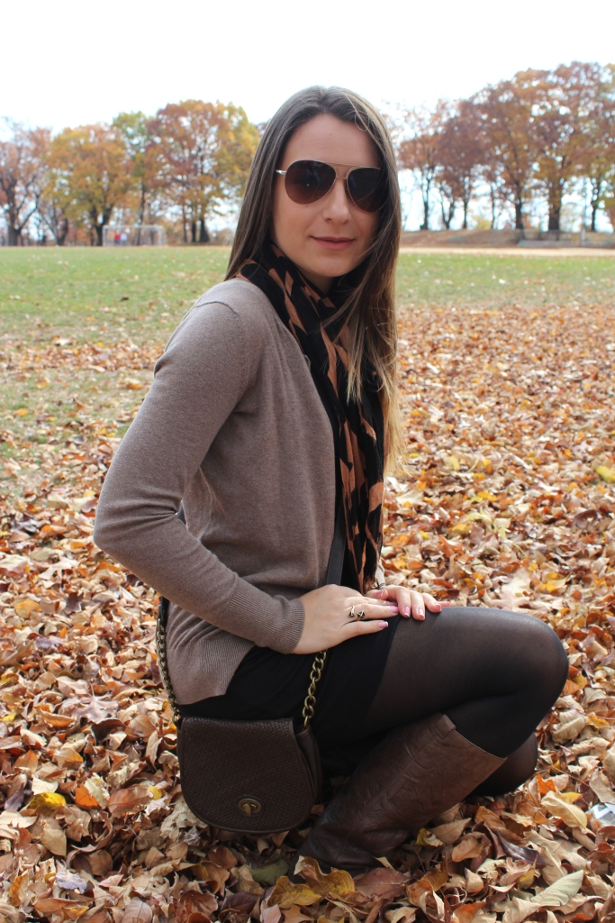 look of the day park 001